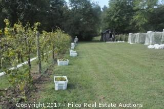 Vineyard & 3 Bedroom Country Home on 15+/- AC